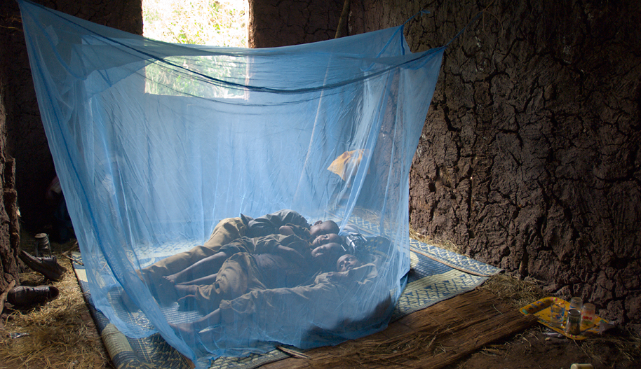Image result for malaria eradication in africa